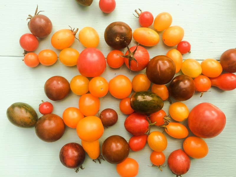 Heirloom Cherry Tomatoes for Salad