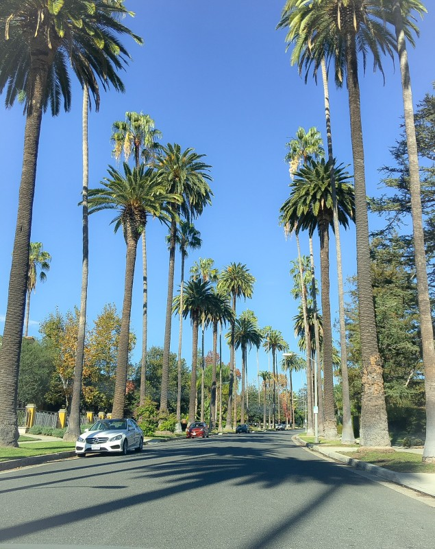 Beverly Hills, Driving in Los Angeles
