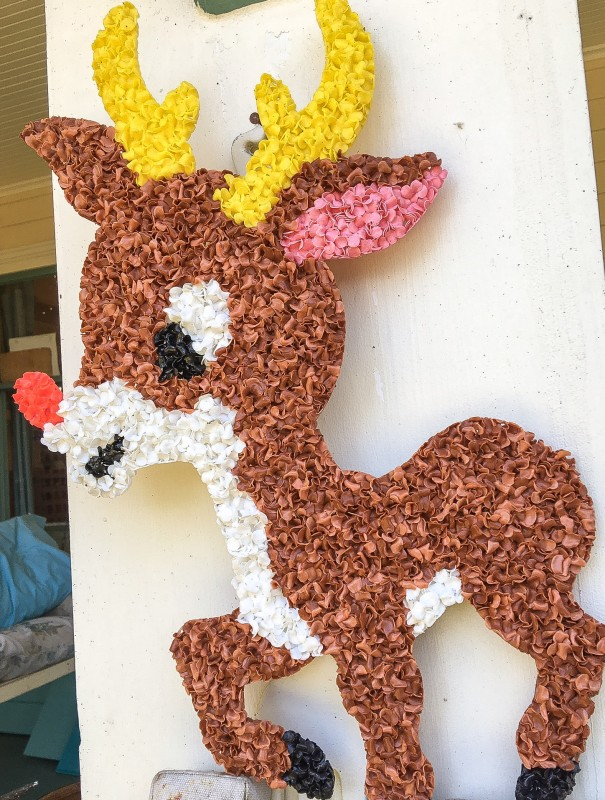 Rudolph on Porch
