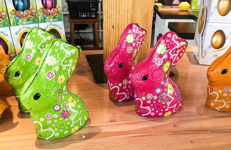Chocolate Easter Bunnies at Providore