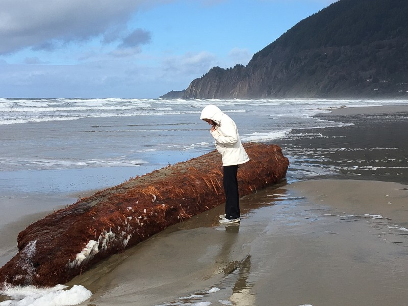 Charlotte, Log, Manzanita Beach