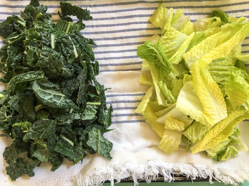 Kale and Romaine for Caesar Salad