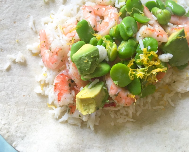 Shrimp and Fava Burrito