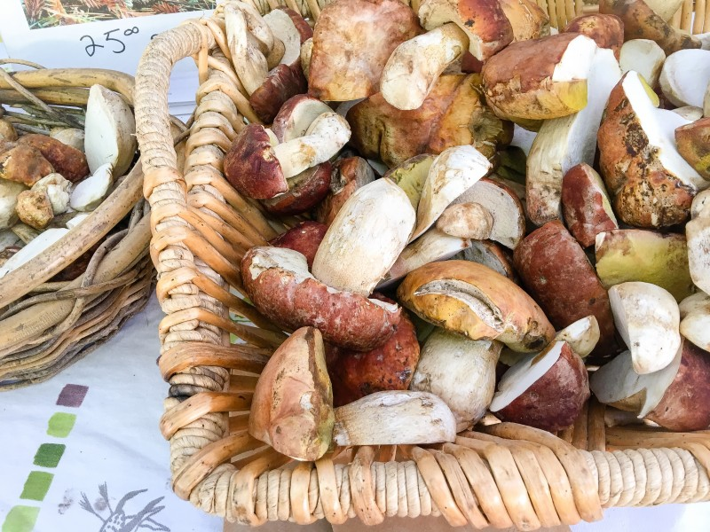 Fresh Porcinis at PSU Farmers Market