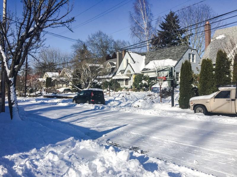 Grant Park, Portland, Snowstorm