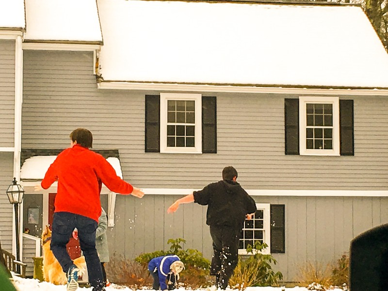 Polly's House, Snowfight, Concord