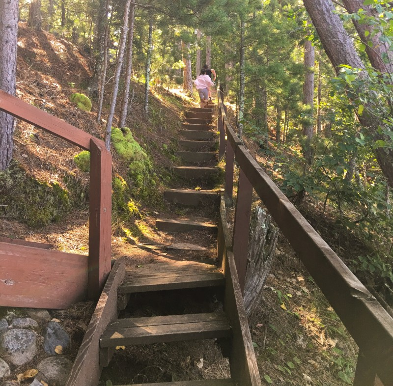 Stairs up to cabin, Wisconsin