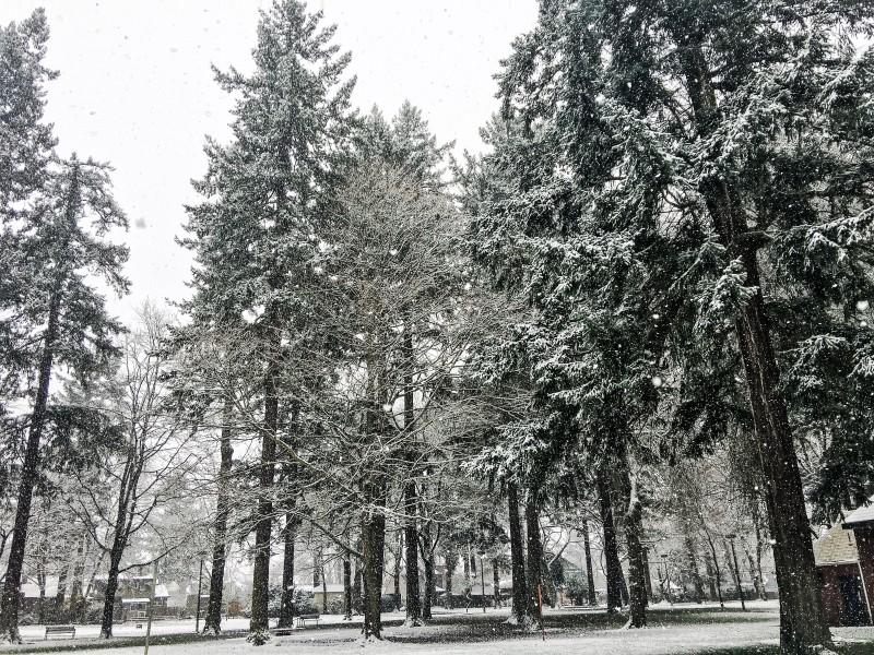 Girls Weekend WIlshire Park Snow