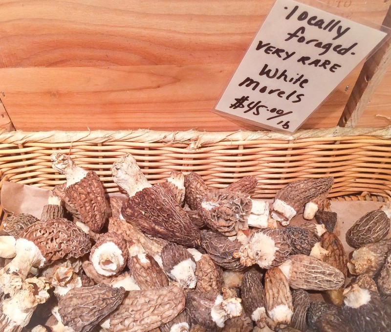 White Morels @ Pastaworks, Portland
