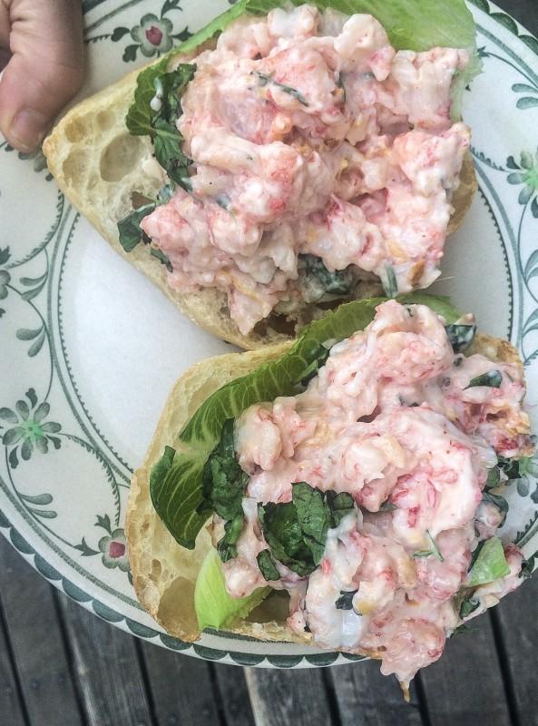 Almost-like Lobster Roll in Portland