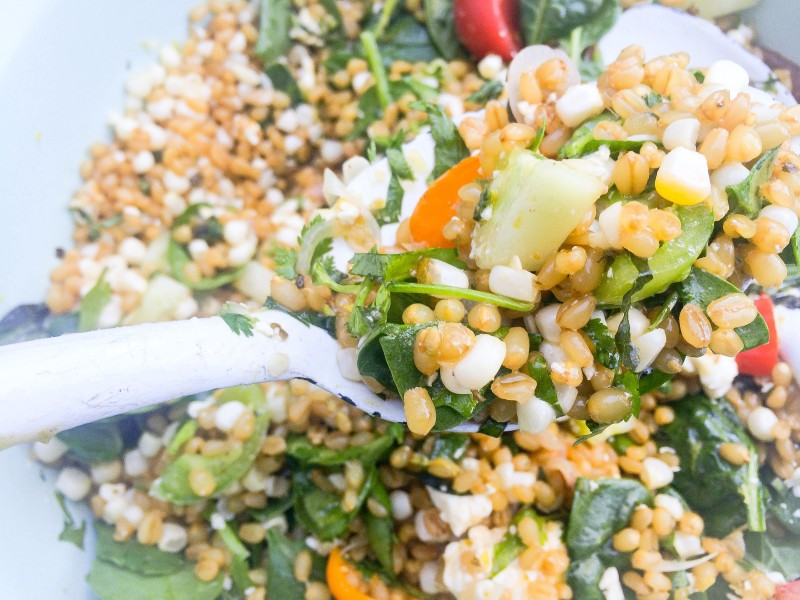 Wheatberry Salad with Corn, Tomatoes and Cucumber