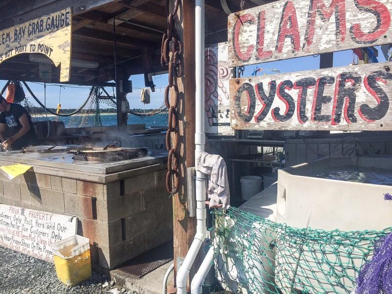 Clam and Oysters on Oregon Coast, Wheeler