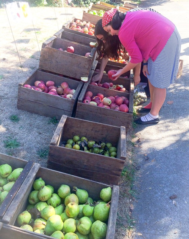 Hood River Apple and Pear Stand in Portland
