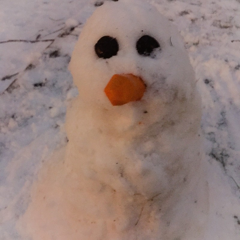 Snow Man in Front Yard