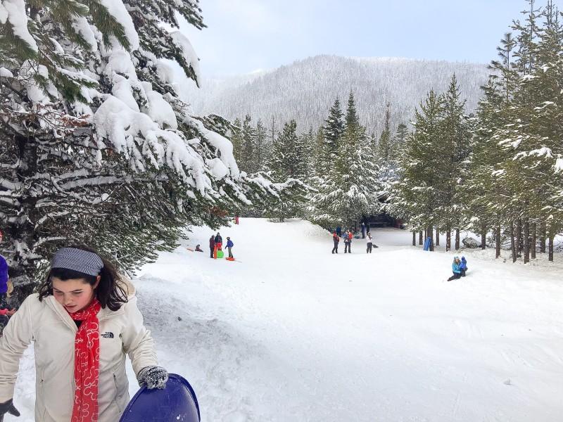 Sledding at Mt. Hood Littlejohn Sno-Park