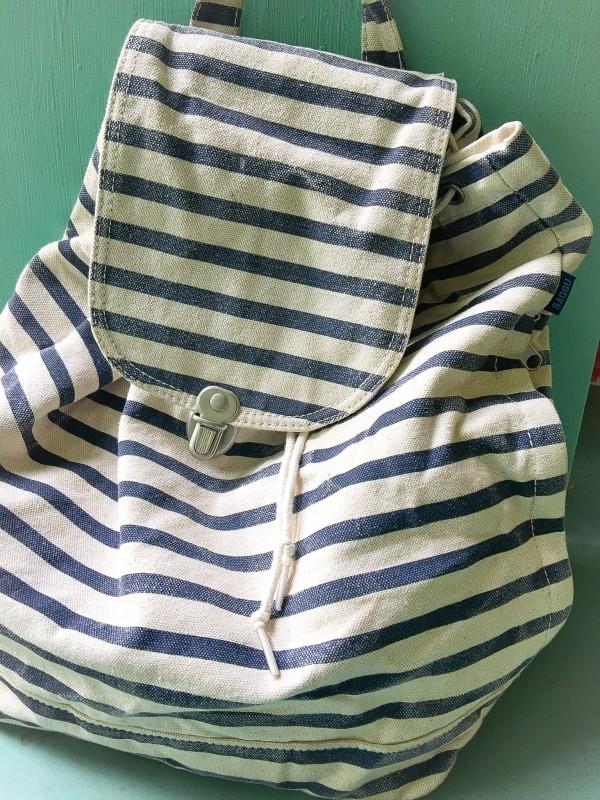 Baggu Bag Knapsack from Goodwill Bins