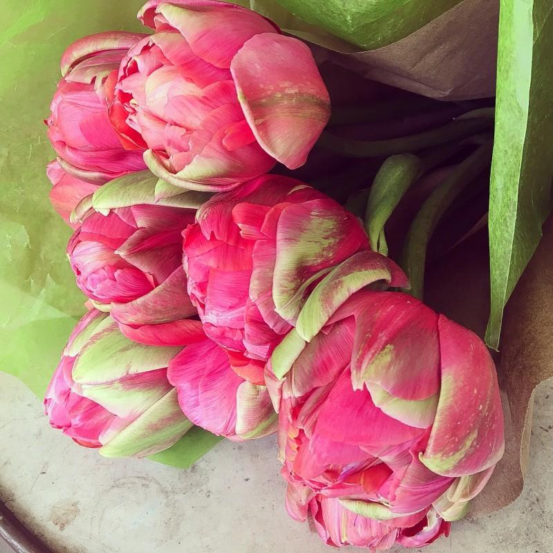 Tulip Peonies, Porch Drop Off