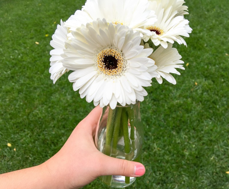 White Gerber Daisies from Elizabeth