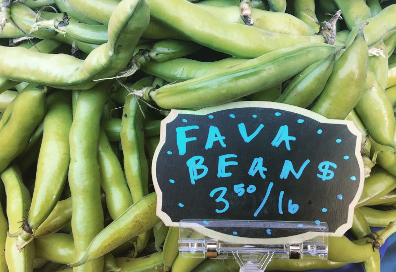 Fava Beans at PSU Farmers Market, Portland