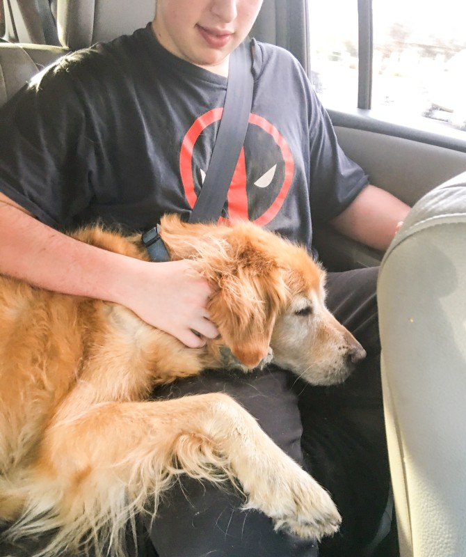 oliver and Bailey coming back from Kruger Farms