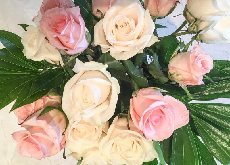 Roses for Brthday
