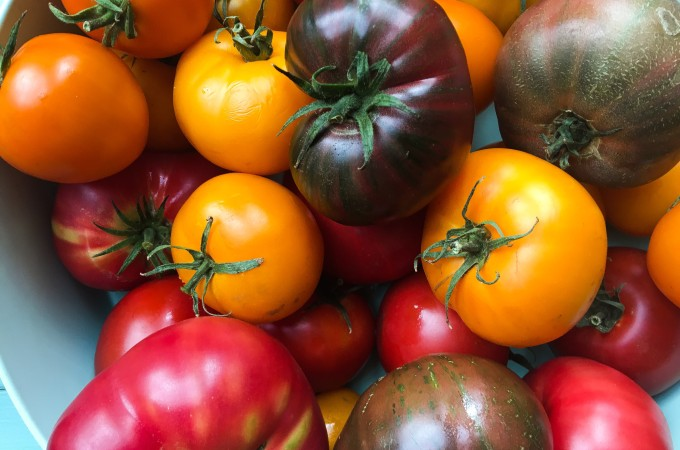 tomatoes from farmers market