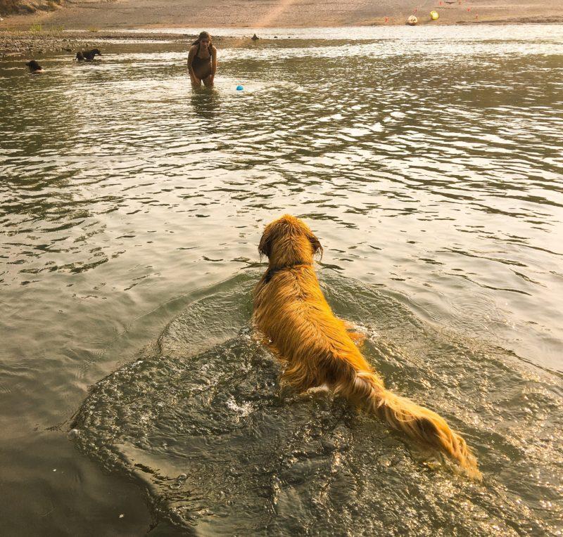 Best of Summer Portland Blowout - Sandy River Porter