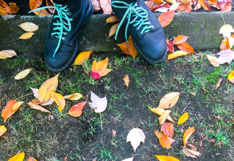Boots and Leaves