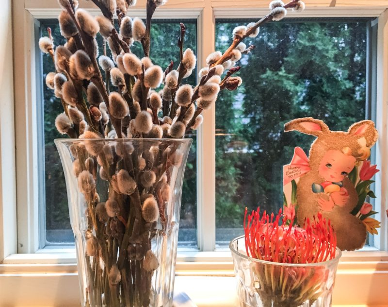 pusst willow Easter window sill flowers