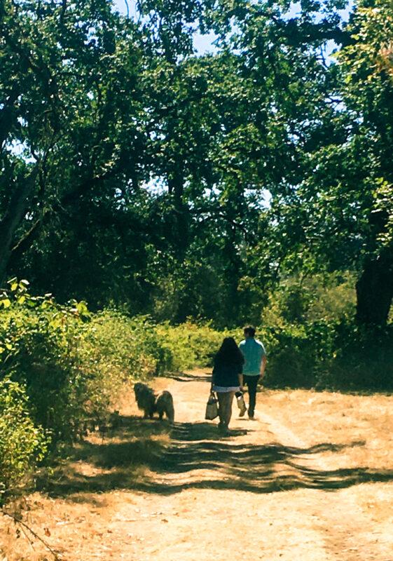 hike Sauvie Island Charlotte and Oliver
